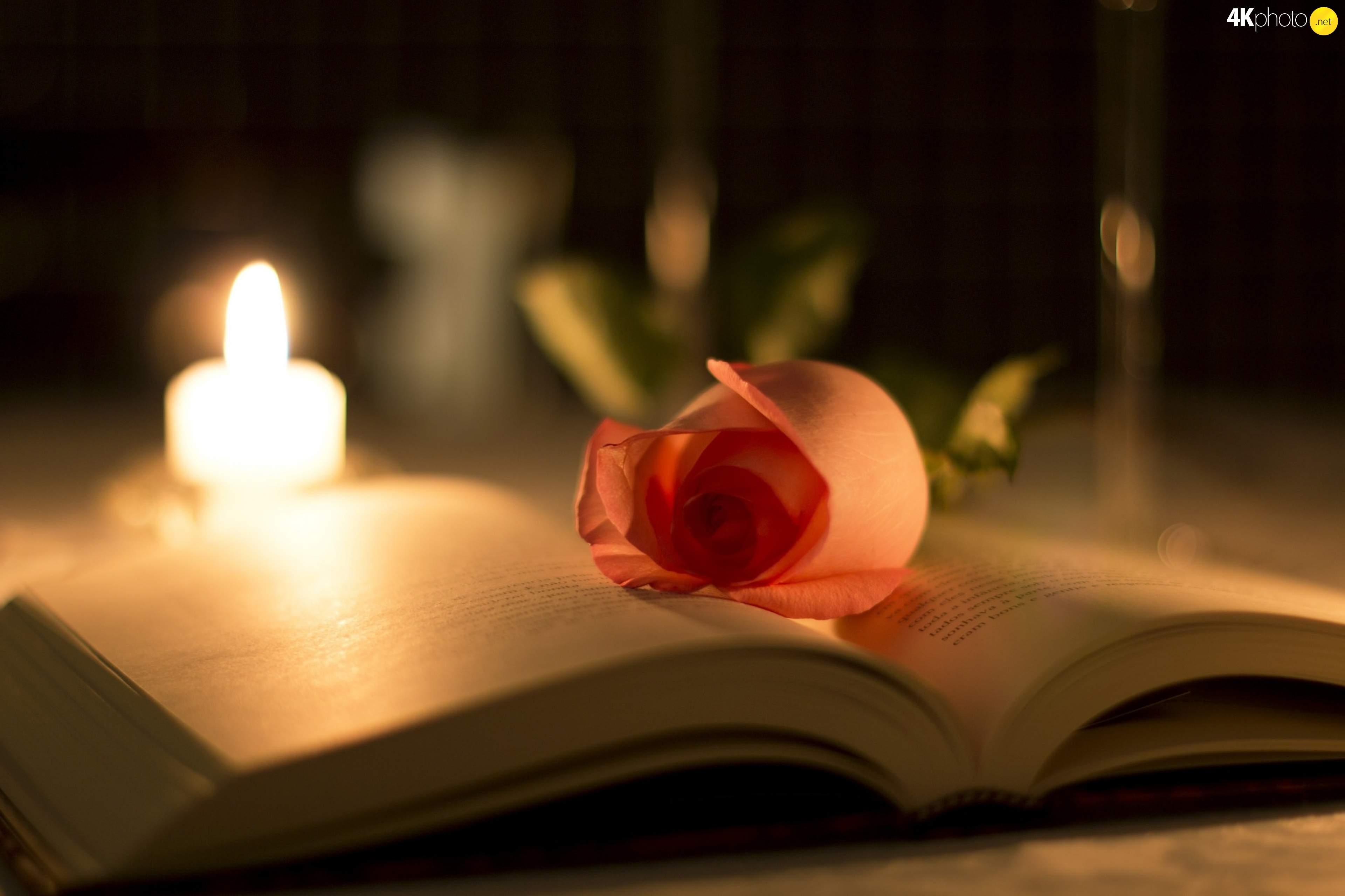 book-candle-rose.jpg